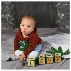 Levy met Naamblokken Dino van hout
