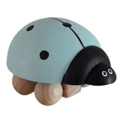 Lieveheersbeestje Mint - Ladybug Mint
