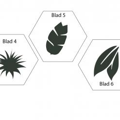 Dieren keuze Hexagons